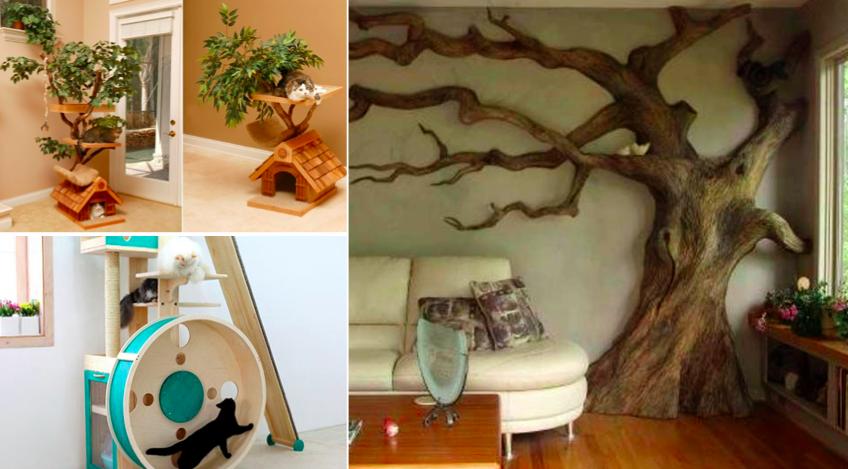 40 id es cadeaux pour votre chat il va adorer des id es. Black Bedroom Furniture Sets. Home Design Ideas
