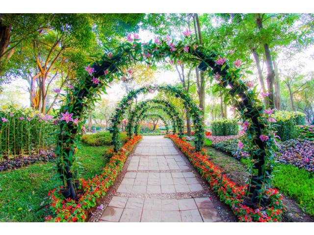 23 id es sublimes d 39 arches pour d corer son jardin page 2 sur 3. Black Bedroom Furniture Sets. Home Design Ideas