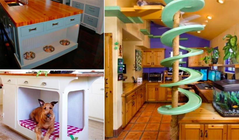 12 idées pour adapter votre maison à votre animal de compagnie