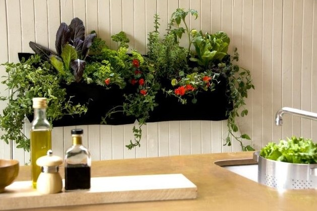 faire un petit jardin d interieur - 28 images - calla un jardin d ...