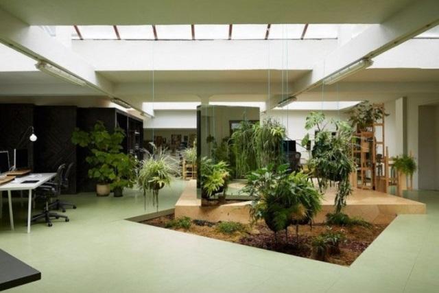 38 id es pour faire un petit jardin d 39 int rieur des id es. Black Bedroom Furniture Sets. Home Design Ideas