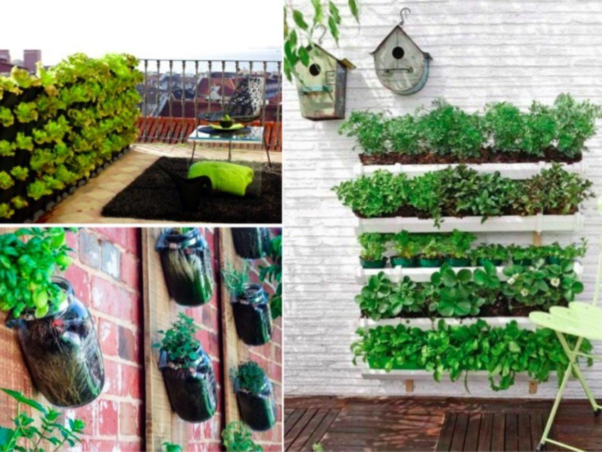 Mur Végétal Extérieur Palette 16 idées pour créer un petit potager sur son balcon