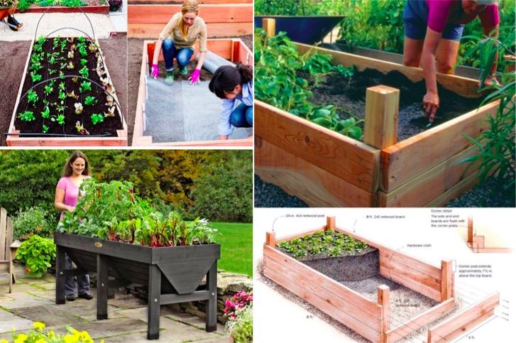 20 id es de jardins sur lev s g niaux pour vos plantes for Idees plantes jardin