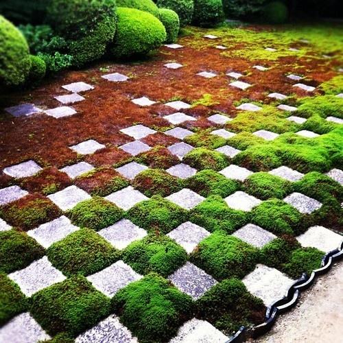 12 id es d co pour avoir un jardin original des id es for Jardin original