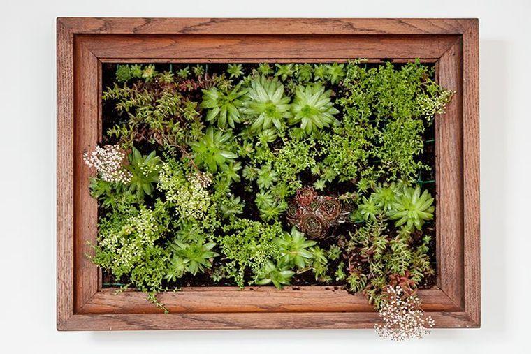 creer-un-jardin-vertical-decoration-maison