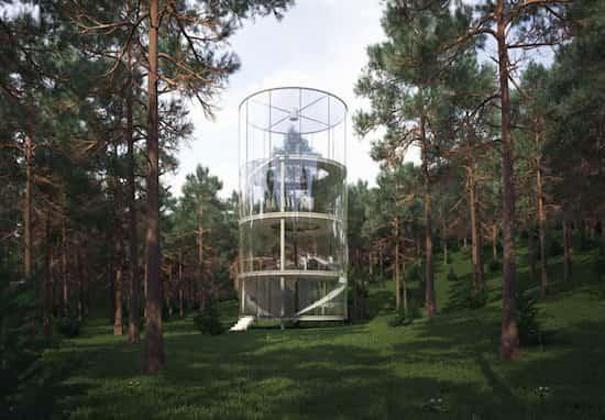 22-maison-verre-autour-arbre