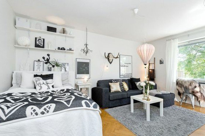 petit-studio-20m2-sol-en-bois-clair-deco-studio-etudiant-murs-blancs-canape-gris-anthracite