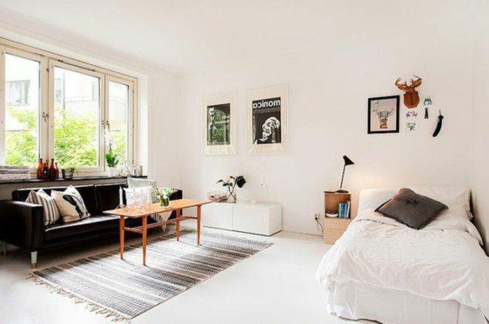 studio-appartement-amenager-studio-pas-cher-murs-beiges-tapis-chic-canape-noir
