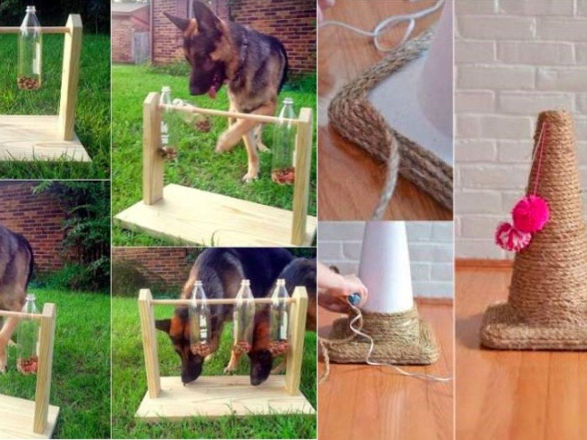Griffoir Chat Fait Maison 18 jouets faits maison pour votre chat ou chien