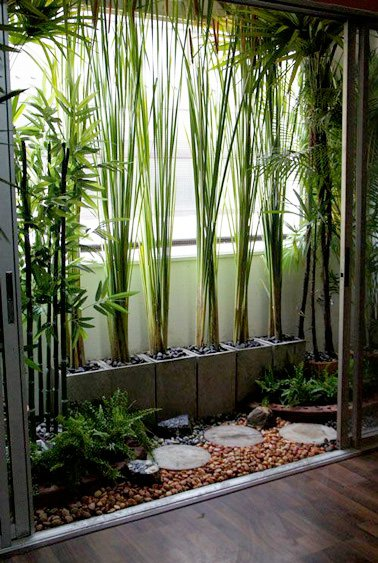 10 d corations de balcon pour vous prot ger du vis vis - Faire pousser du bambou ...