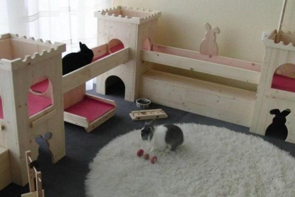 Diy Bunny Hutch Indoor Ideas