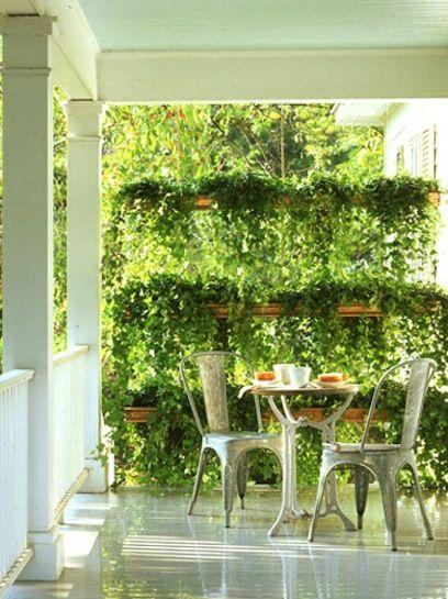 13 façons de préserver l\'intimité dans votre jardin