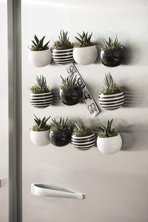 10 mani res de d corer votre int rieur avec des plantes for Pot mural pour plante interieur