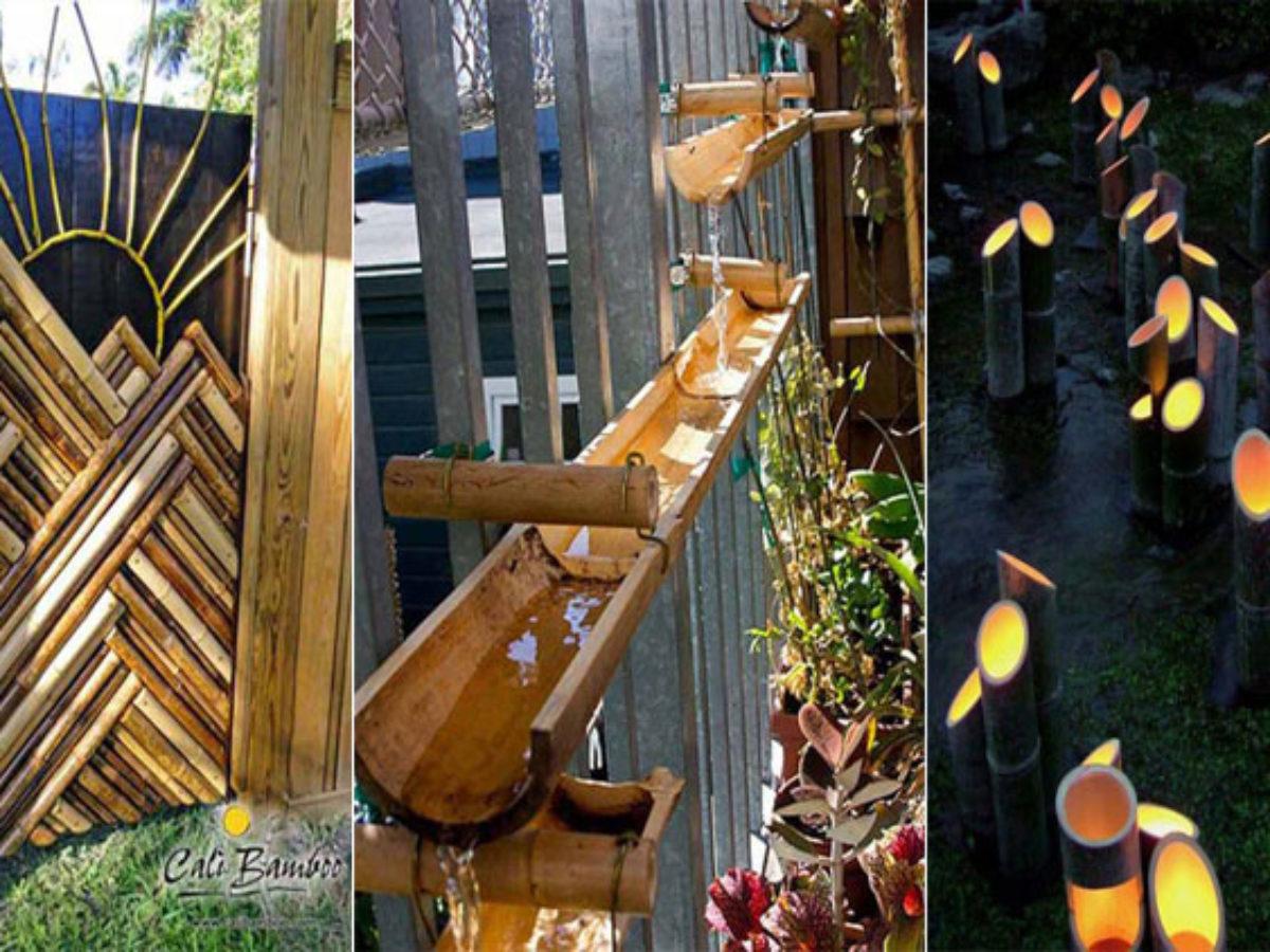Quoi faire avec du bambou