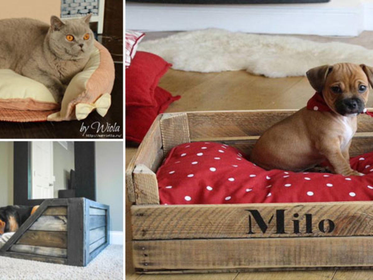 Lit Pour Chien Palette 10 paniers faits maison pour votre chien ou votre chat
