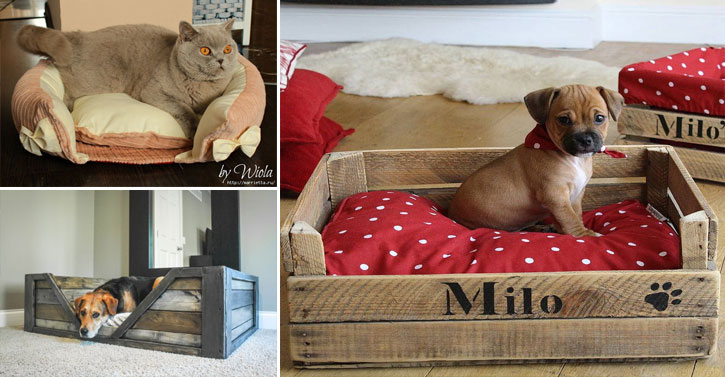 10 paniers faits maison pour votre chien ou votre chat des id es. Black Bedroom Furniture Sets. Home Design Ideas