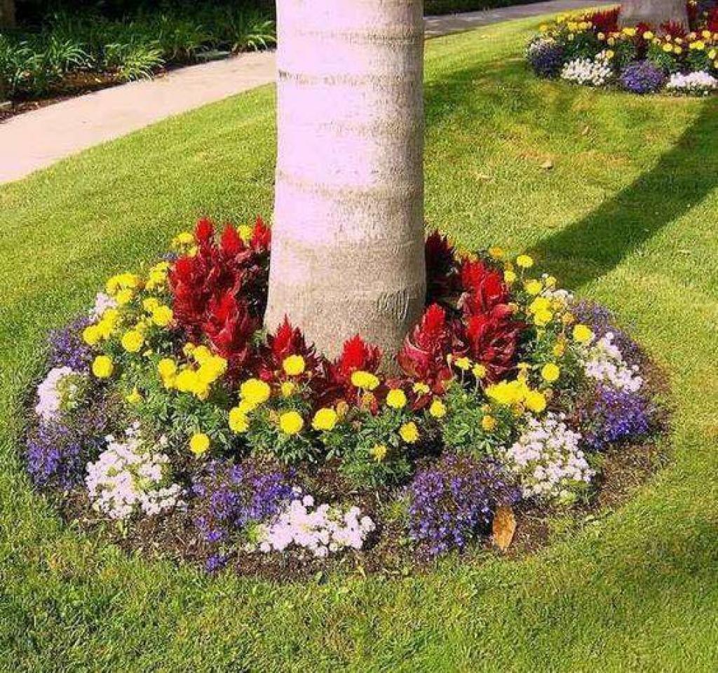 15 d corations r aliser tout autour de votre arbre de for Realiser son jardin
