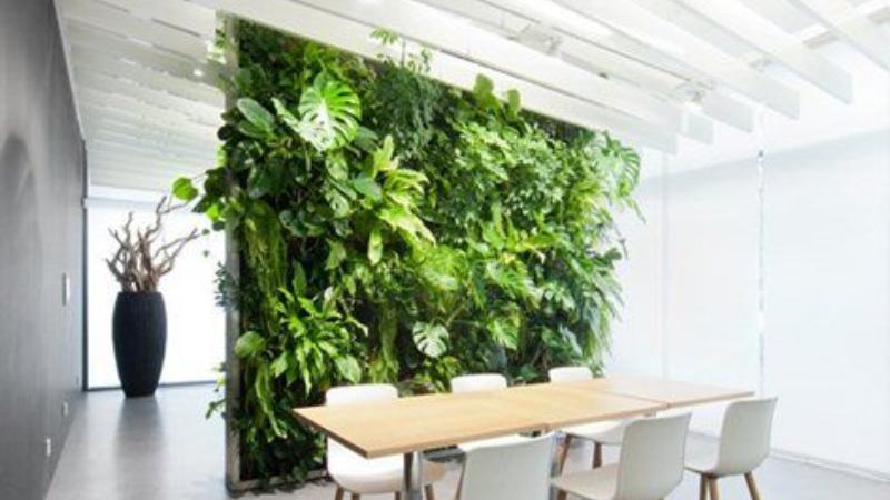 Vous r vez d 39 un jardin vertical d couvrez les plantes - Comment faire un jardin vertical ...