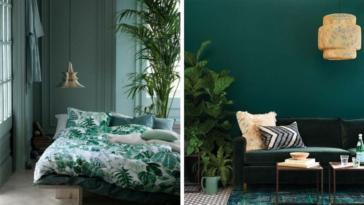 intérieur vert