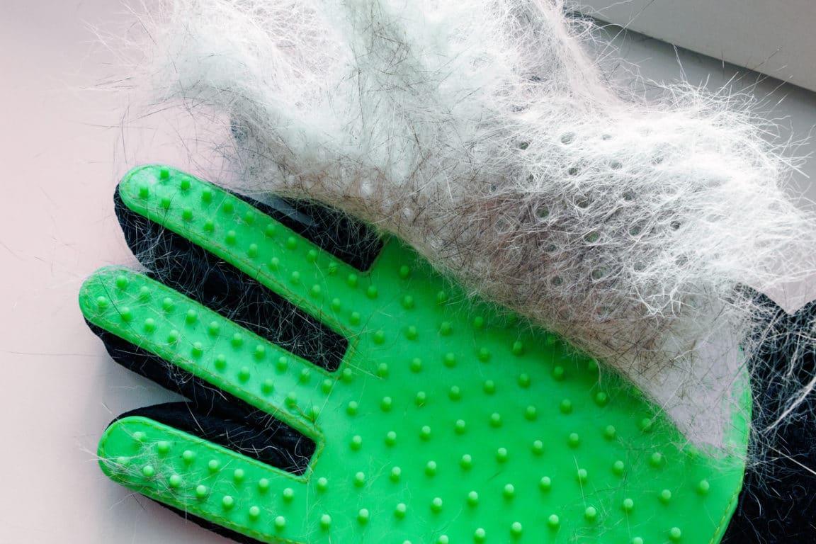 gant poils